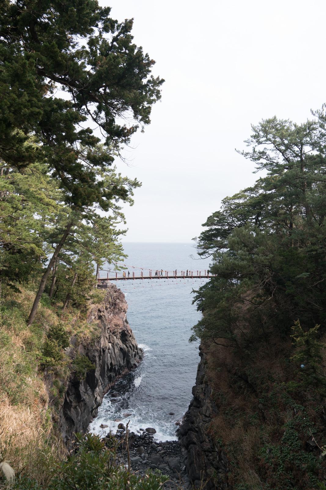 Driving the Jogasaki Coast