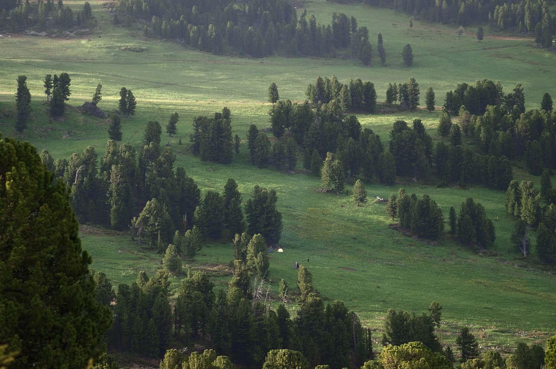 Trekking the Altai Mountains