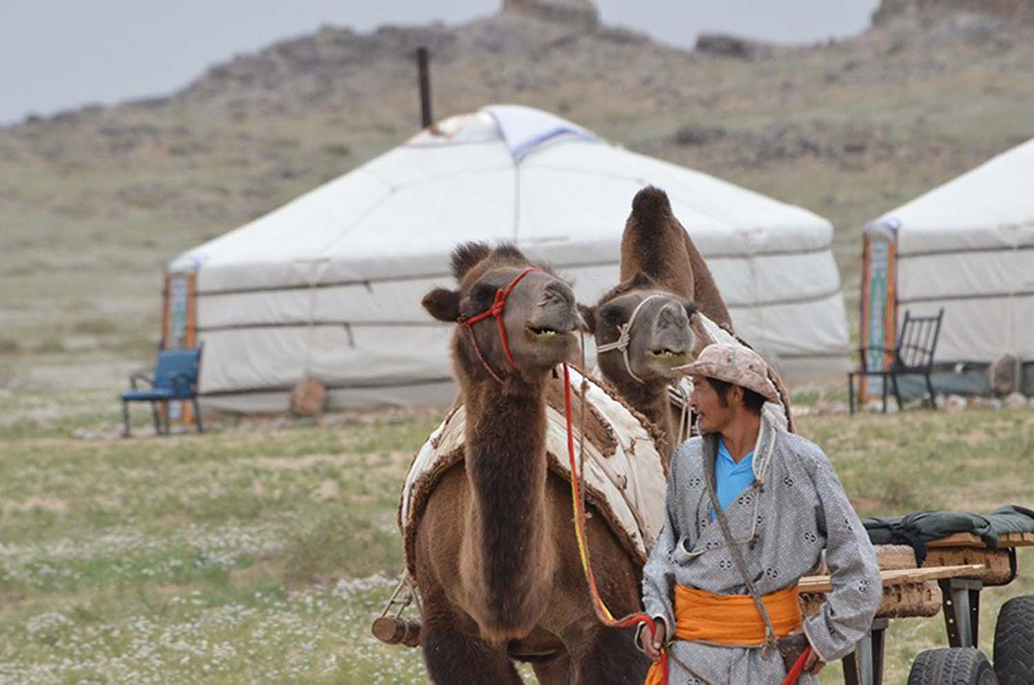 Learn about Nomadic Life