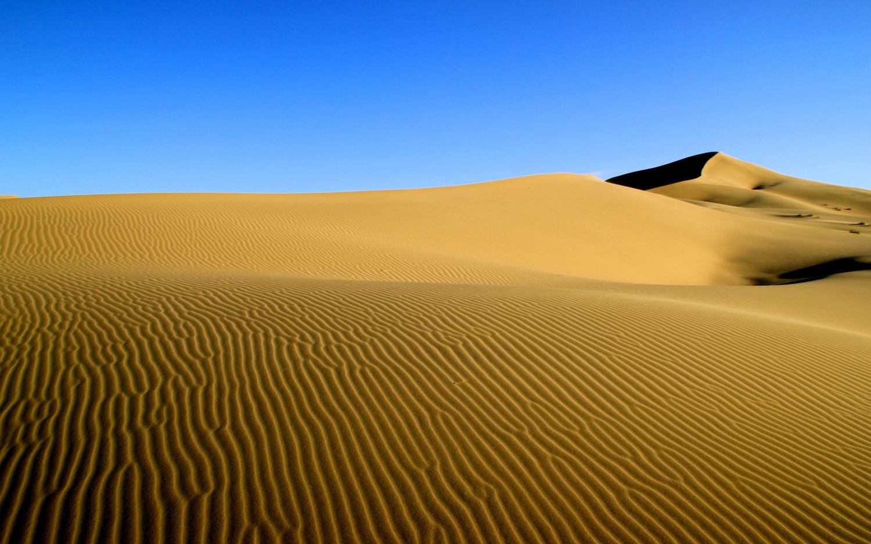 Mongol Sands