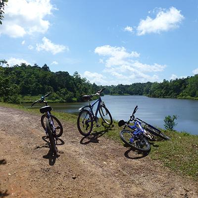 Cycling Through Fields