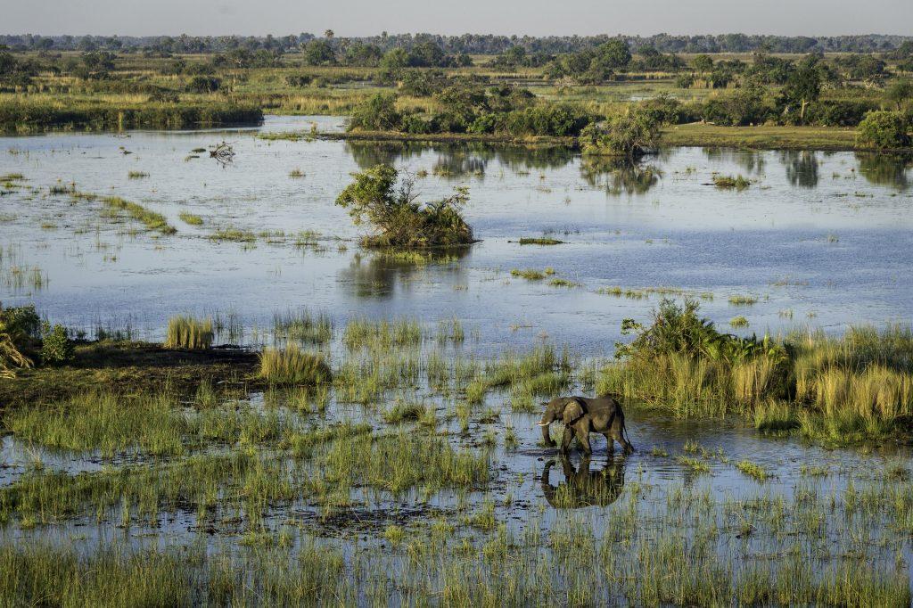 Botswana Mombo