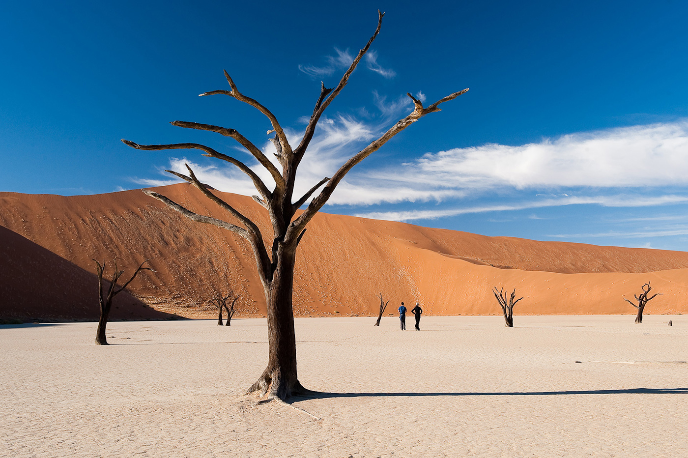 Visit Sossusvlei and Deadvlei
