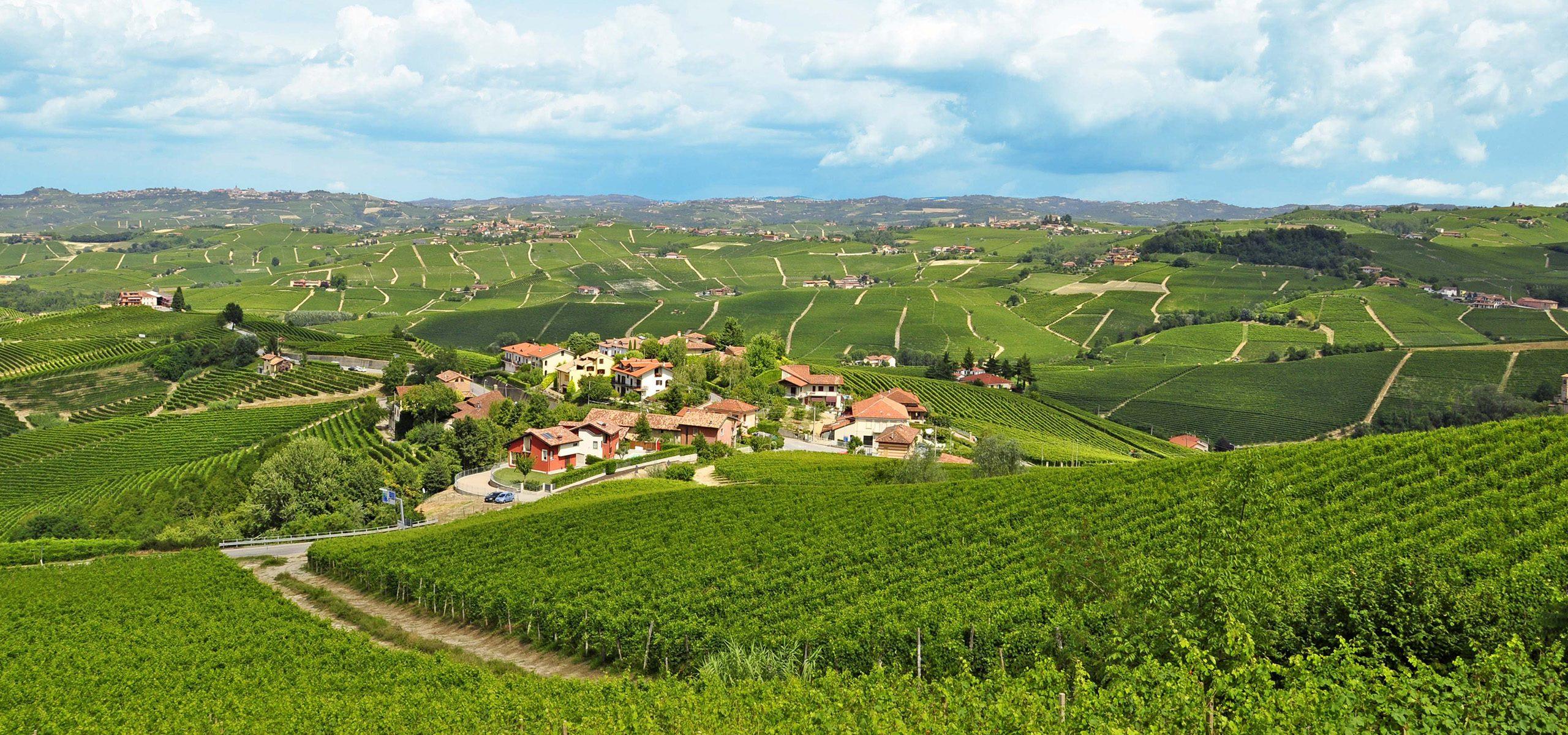 Italy-Piedmont-Langhe