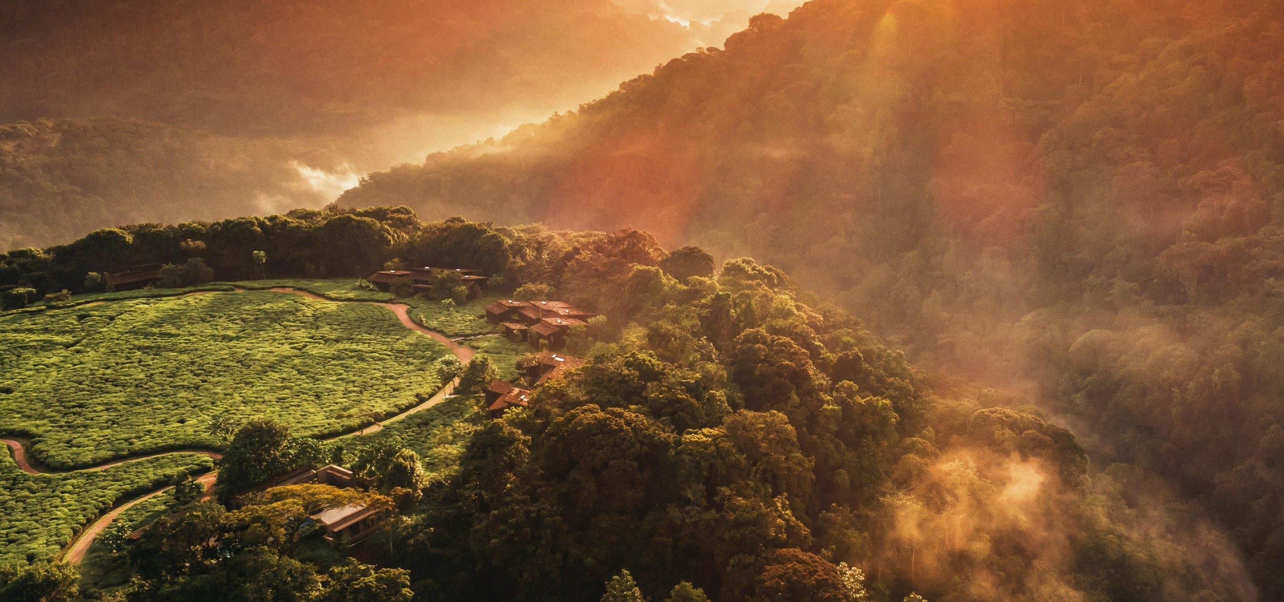 Rwanda - Nyungwe Forest